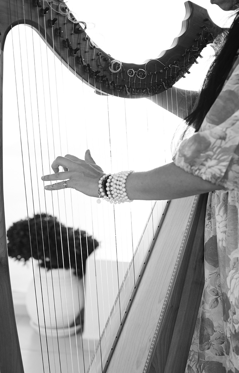 Harp at the wedding