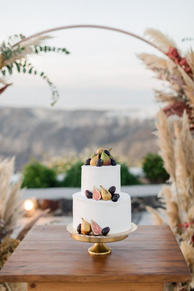 Fig cake and pampas for an autumn wedding