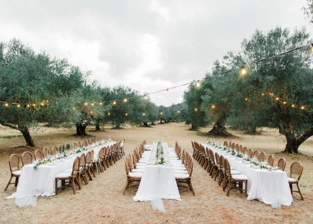 Botanical wedding in Kefalonia Greece - wedding reception