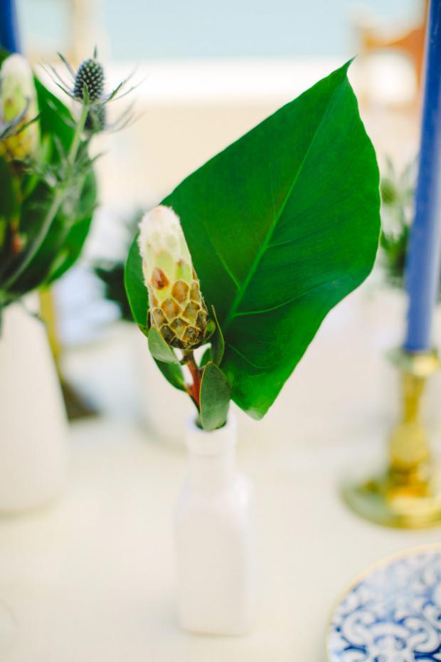 Protea tropical centrepiece