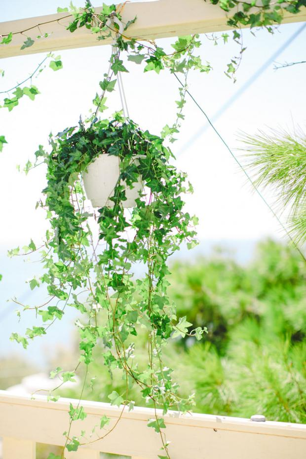 Botanical Pantone Greenery wedding in Greece