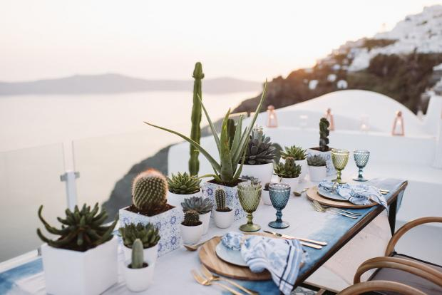Cactus wedding - Dinner table