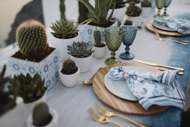 Cacti wedding- dip died tablecloth -blue  patterned napkin
