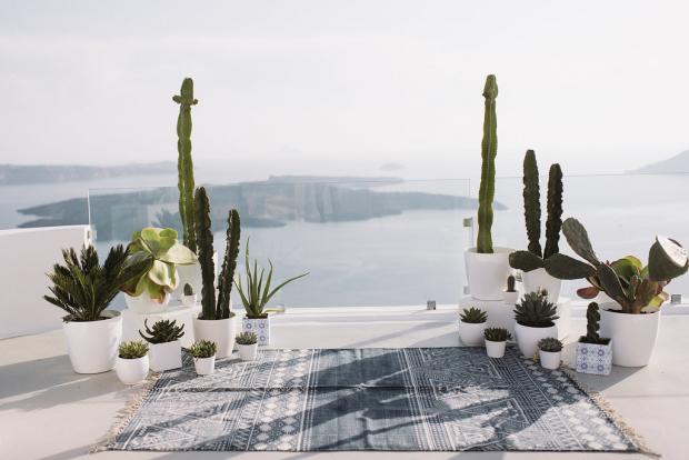 Bohemian cactus wedding in Greece