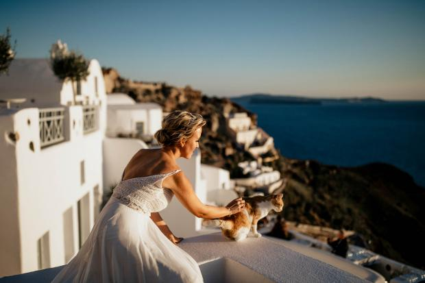 Santorini wedding cat