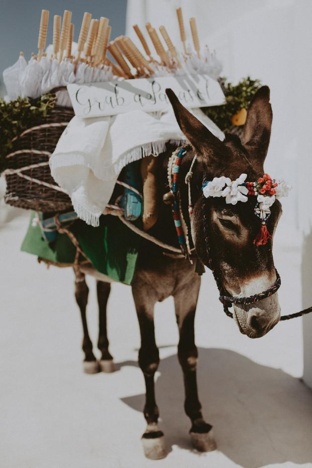 Wedding in Greece- Grab & parasol donkey